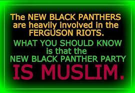 Domestic Muslim Groups