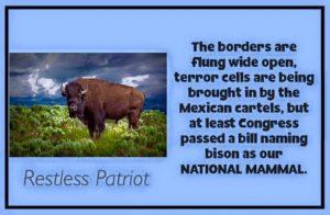Jihad reaction: Arrest ranchers & hug bison.